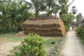 India 2007